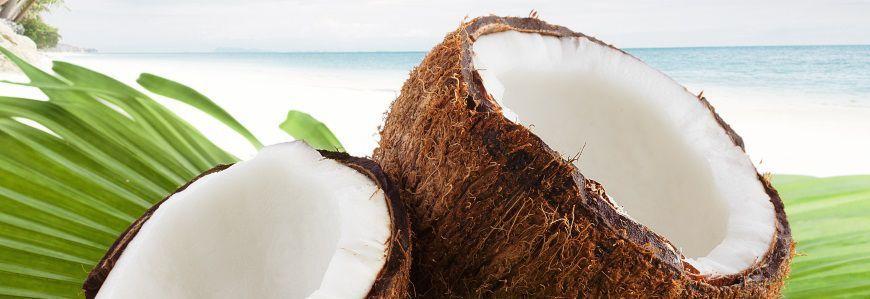 Kokosolie til hud og hår