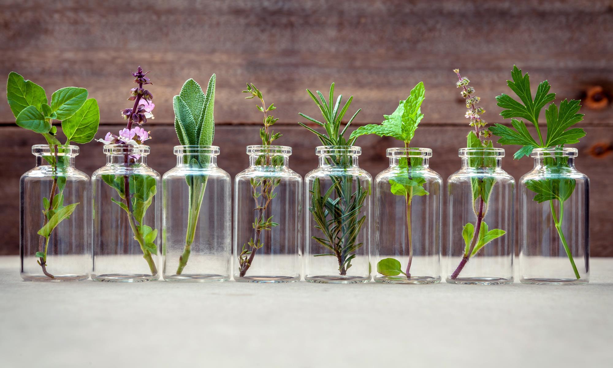 glasflasker med blomster i - repræsenterer æteriske olier