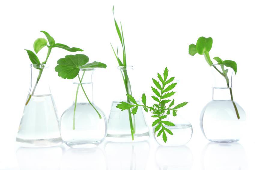 naturlig og fri for kedelig kemi - flasker med naturlige elementer