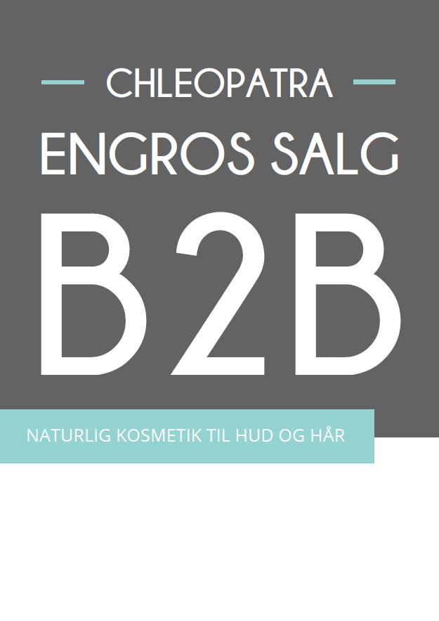 B2B 1