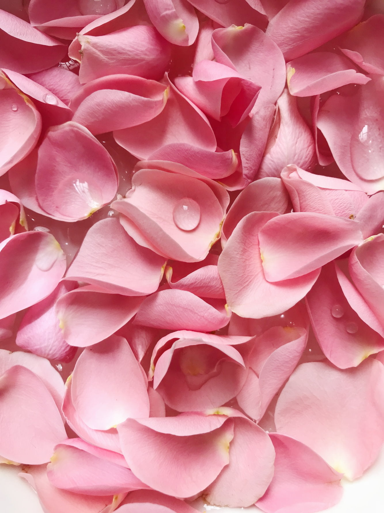 rosenblade